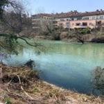 Più alberi all'isola ecologica di Verona e un nuovo ponte ciclopedonale sull'Adige